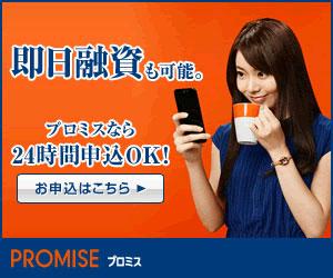 プロミス-300_250-20150702
